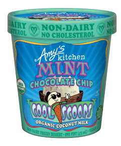 Cool Scoops - Mint Chocolate Chip Non-dairy Ice Cream