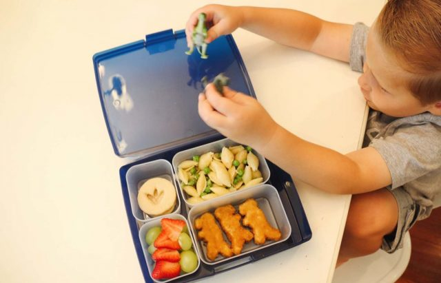 Dino themed lunchbox