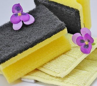 Spring cleaning sponges