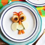 Farm Rich Kids Owl Snacks