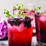 Blackberry Tequila Lemon Cooler