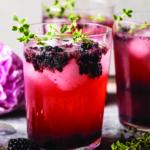 Floridas Natural Blackberry Tequila Lemon Cooler